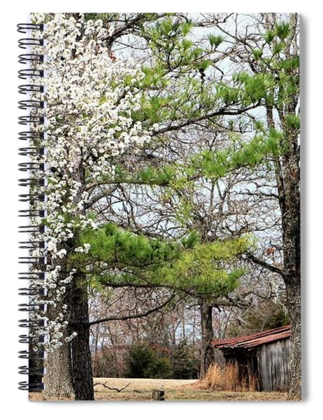 The Old Shed In Spring Spiral Notebook
