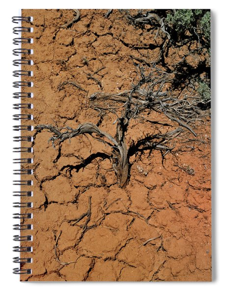 The Parched Earth Spiral Notebook
