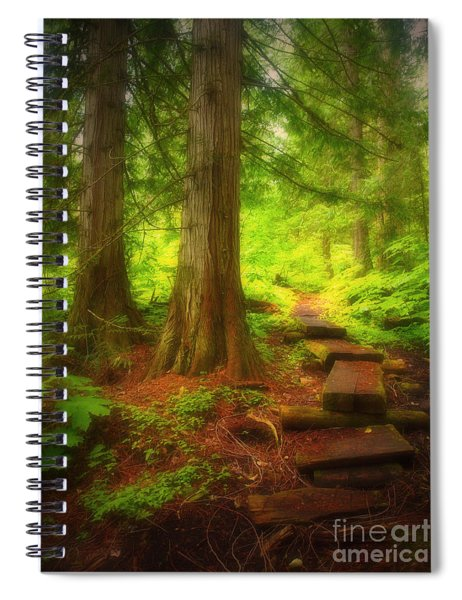 The Path Through The Forest Spiral Notebook