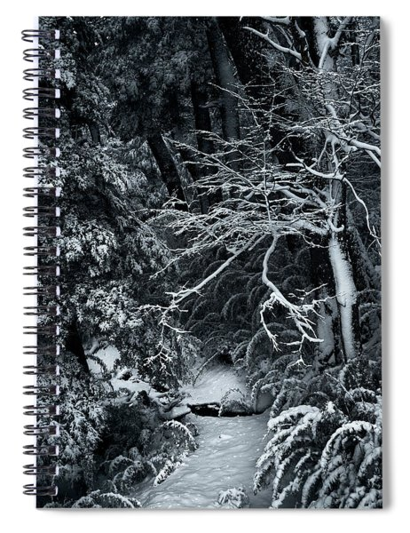 The Path To The Frozen Forest In The Argentine Patagonia Spiral Notebook