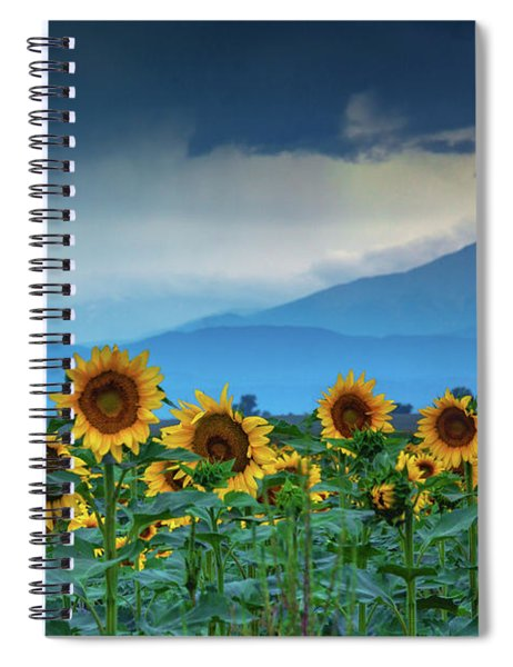 Spiral Notebook featuring the photograph The Pending Rain by John De Bord