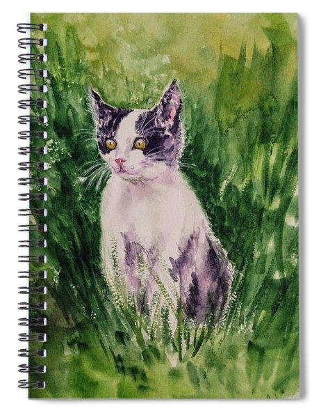 The Playful Kitten 3 Spiral Notebook