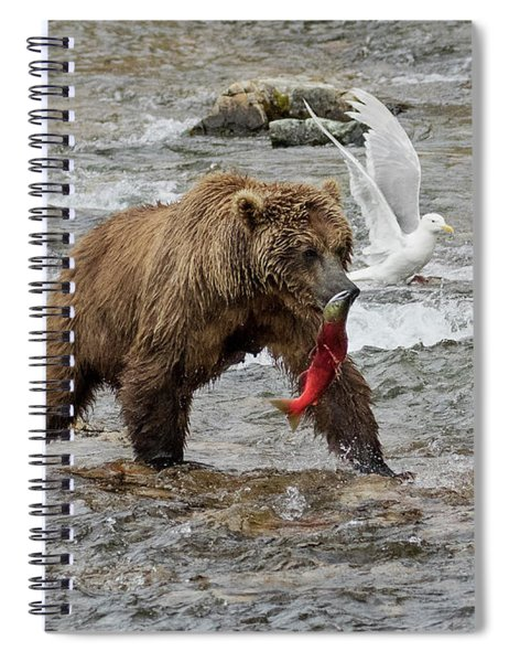 The Plight Of The Sockeye Spiral Notebook