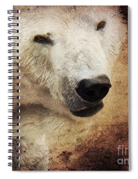 The Polar Bear Spiral Notebook