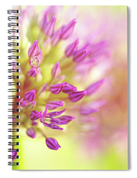 The Power Of Love Spiral Notebook