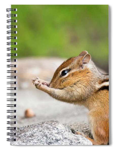 The Praying Chipmunk Spiral Notebook