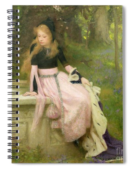 The Princess And The Frog Spiral Notebook