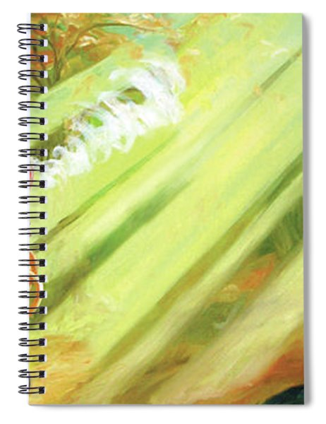 The Race Spiral Notebook