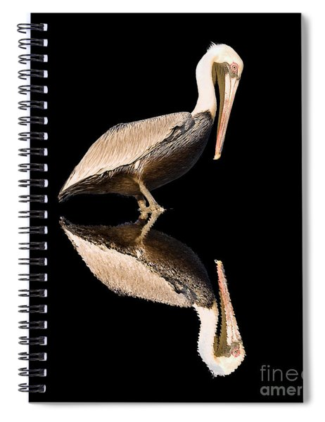 The Reflection Of A Pelican Spiral Notebook