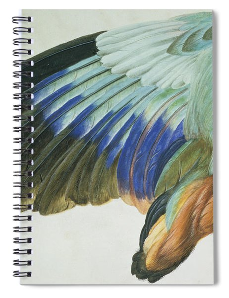 The Right Wing Of A Blue Roller Spiral Notebook