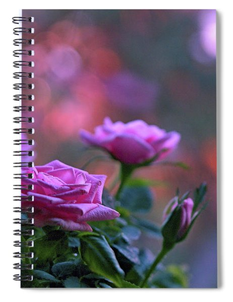 The Roses Spiral Notebook