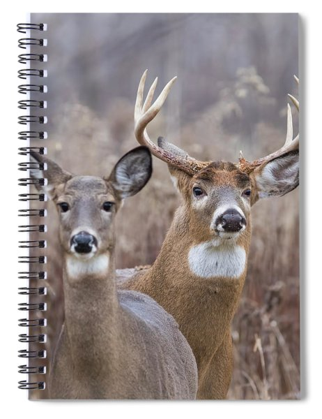 The Royal Family Spiral Notebook