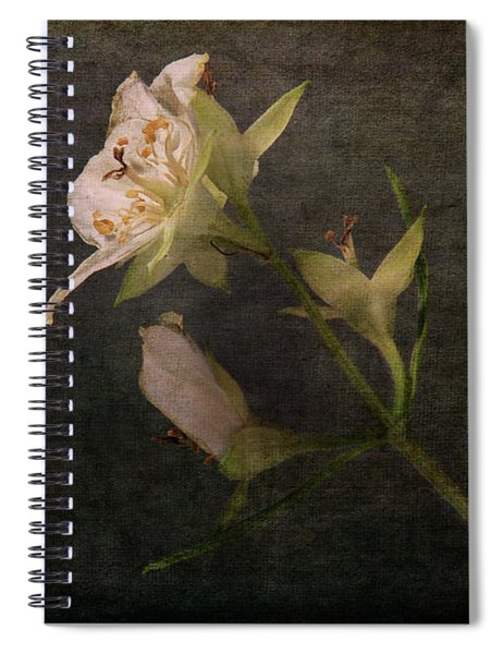 The Scent Of Jasmines Spiral Notebook