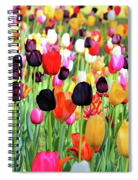 The Season Of Tulips Spiral Notebook