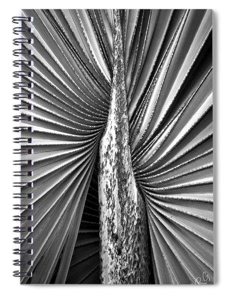 The Second Half Spiral Notebook