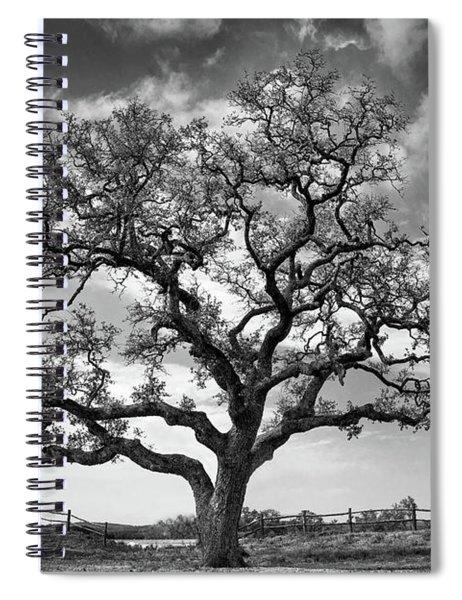 The Sentinel Bw Spiral Notebook