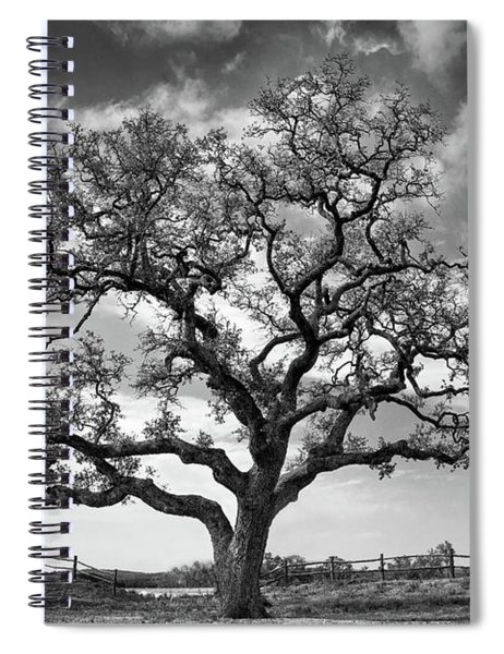 The Sentinel Bw Spiral Notebook