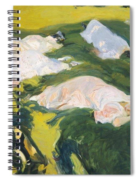 The Siesta Spiral Notebook