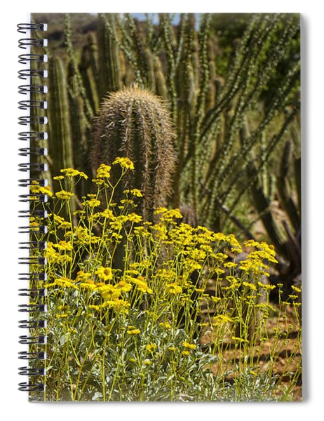The Song Of The Sonoran Desert Spiral Notebook