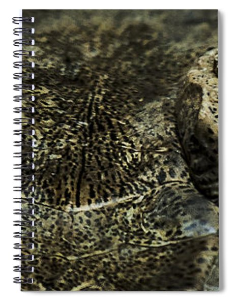 The Soul Searcher Spiral Notebook