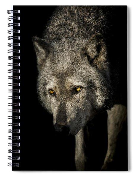 The Stalker Spiral Notebook