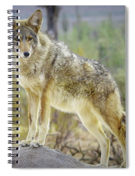 The Stance Spiral Notebook