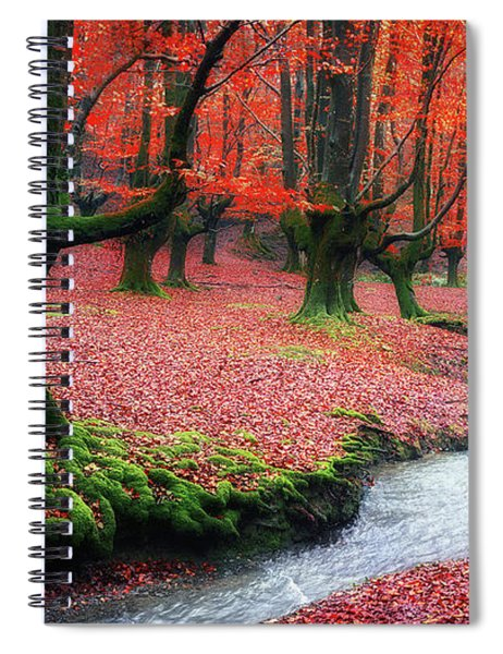 The Stream Of Life Spiral Notebook