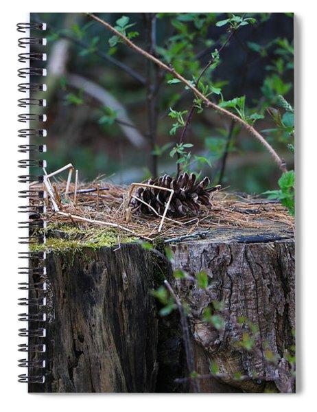 The Stump Spiral Notebook