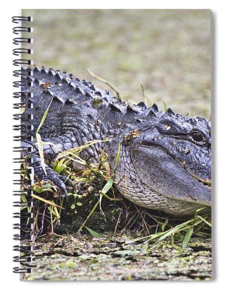The Sunbather Spiral Notebook