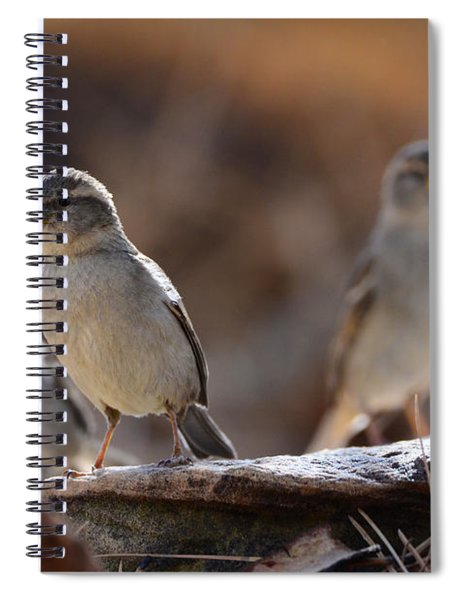 The Three Musketeers Spiral Notebook