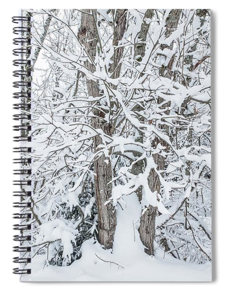 The Tree- Spiral Notebook