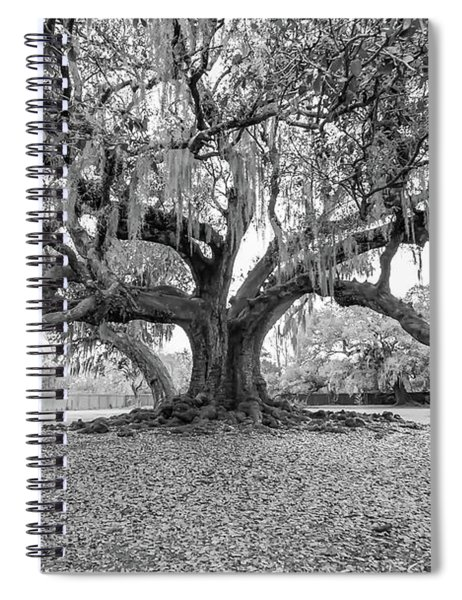 The Tree Of Life Monochrome Spiral Notebook