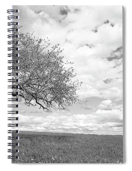 The Tree On The Hill Spiral Notebook