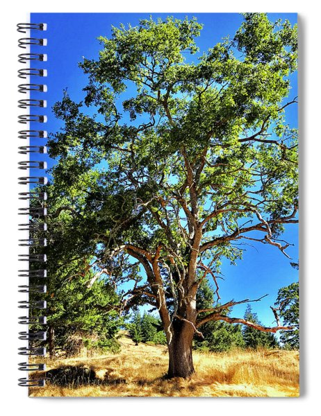 The Turtleback Tree Spiral Notebook by Lorraine Devon Wilke
