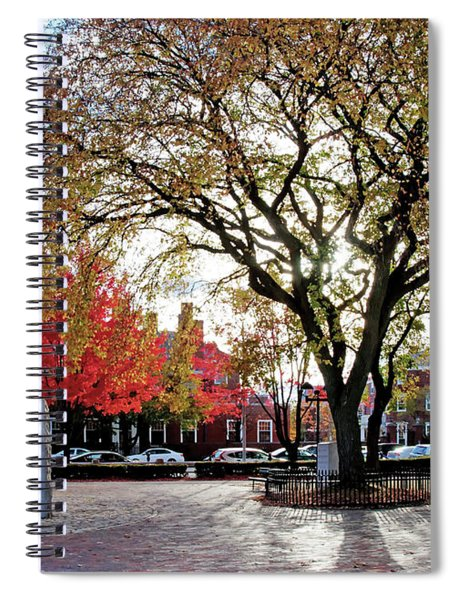 The Washington Elm Spiral Notebook
