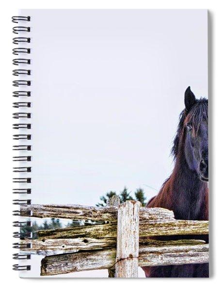 The Watcher 2 Spiral Notebook