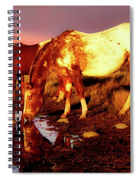 The Watering Hole Spiral Notebook