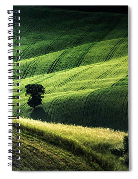 The Way The Light Falls Spiral Notebook