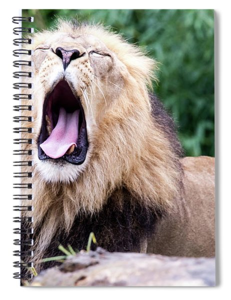 The Yawn Spiral Notebook