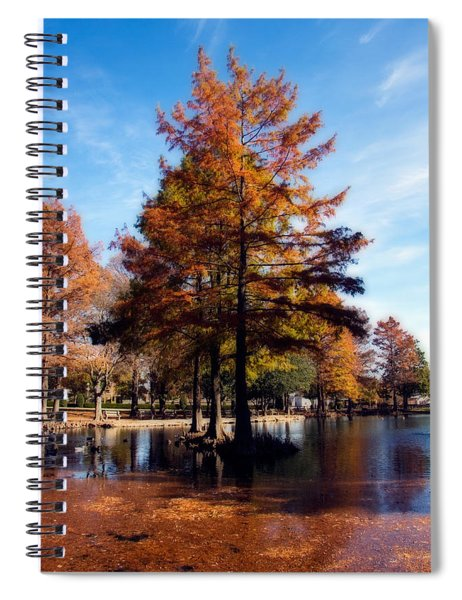 Theta Pond Spiral Notebook