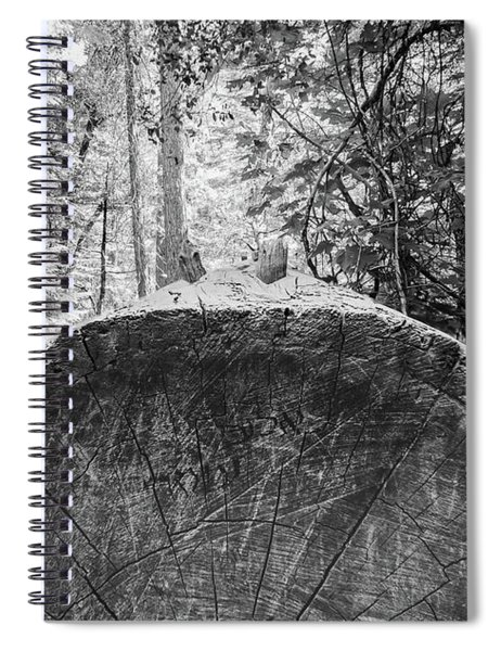 Thinking Tree- Spiral Notebook