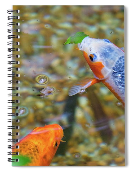 This Is Mine Fish Spiral Notebook