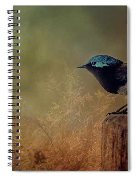 This Is My Perch Spiral Notebook