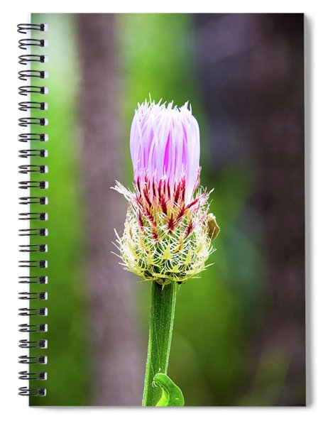 Thistle In The Canyon Spiral Notebook