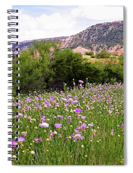 Thistles In The Canyon Spiral Notebook