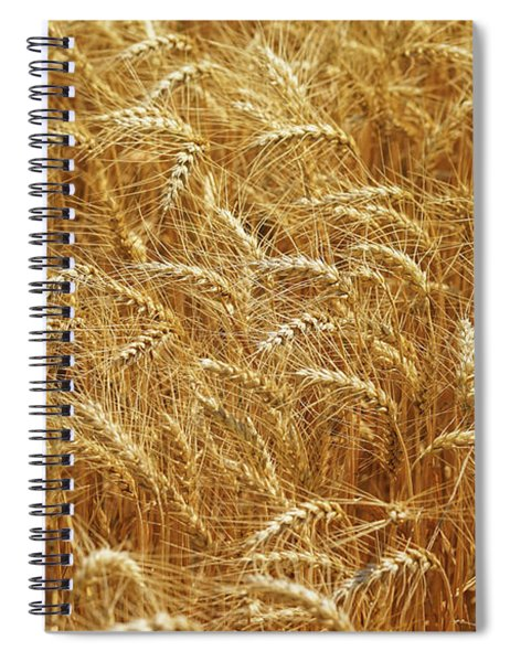 Those Beautiful Waves Of Grain Spiral Notebook
