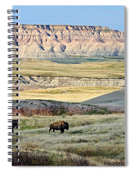 Three Bison Bulls Spiral Notebook