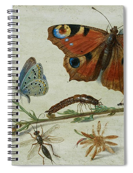 Three Butterflies, A Beetle And Other Insects Spiral Notebook