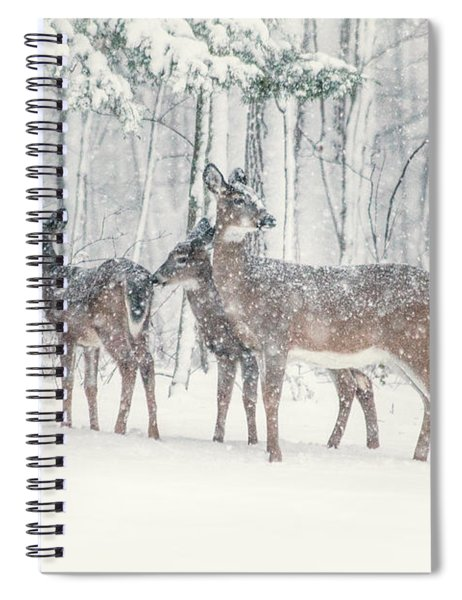 Three Deer Come Calling Spiral Notebook