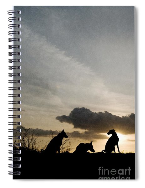 Three Dogs At Sunset Spiral Notebook
